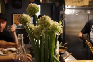 Onion Blossoms